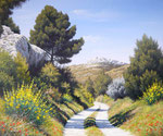 Chemin dans la vallée des Baux      Huile/Toile ( 46 / 38cm )      VENDUE