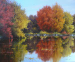 Lac en automne      Huile/Toile ( 46 / 38cm )      VENDUE