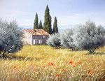 Vieille masure dans l'oliveraie      Huile/Toile ( 35 / 27cm )      VENDUE