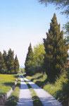 Promenade vers Mouriès      Huile/Toile ( 41 / 27cm )      VENDUE
