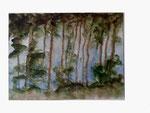 Waldsee Spiegelung - 24 x 32 - Aquarell / Papier - 2013