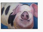 Schweinchen Schlau - 50 x 70 - Acryl / Leinwand - 2015
