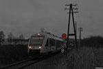 LINT 41 der Hessischen Landesbahn (HLB) unterwegs auf der Vogelsbergbahn bei Lauterbach Nord als HLB 24832 Fulda - Limburg(Lahn) am 23.11.13