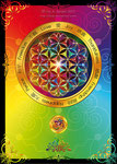 Flower of Life Postcard