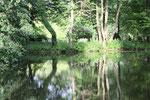 Bänke am Ufer, Bäume spiegeln sich im Wasser. Schlosspark Charlottenburg. Foto © Helga Karl