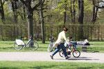 März im Schlosspark Charlottenburg. Liegender Mann auf der Parkpank und Frau, neben dem Fahrrad fahrenden Jungen laufend. Foto: Helga Karl