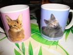 Tasses avec décoration chat