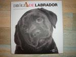 livre chien labrador, 10 euros