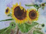 Sonnenblumen, Aquarell - VERKAUFT