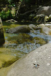 水の流れる音を聞いてるだけで癒されたなぁ。
