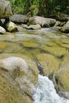 水はちょい冷たかったカナ。