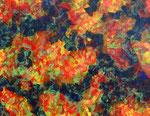 Nature #13 アクリル、アブソルバン、キャンバス 31.8×41cm