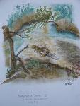Eiskalte Fleischeslust, Pastell, 40x30, 2013