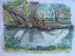 Das andere Ufer 1, Pastell, 30x40, 2013