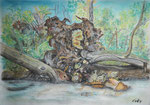 Der Umsturz/Die Entenburg, Pastell, 30x40, 2014