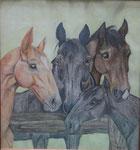 Meine Pferdefamilie, Farbstift, 50x40, 1972