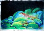Der Glasfisch, Pastell/Aquarellstifte, 20x30, 2014