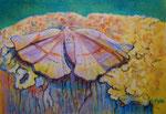 Bunte Blätter 23/ Fliederspanner, 24x34, Pastell, 2016