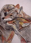 Trio animal, Pastell, 40x30, 2016