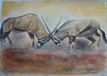 2 Spießer, Pastell, 30x40, 2014