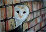 Gute Aussicht, Pastell, 20x30, 2015