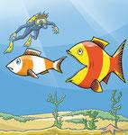 Fish eats Fish  -  Kunde: Key Account, Österreichischer Agrarverlag