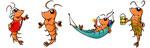 Shrimps  -  Agentur: Kultig, Wels  -  Kunde: Shrimps Bar & Restaurant Salzburg