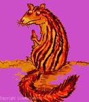 Das Steifenhörnchen. ©lmk