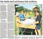 14. Juli 2015, Schwarzwälder Bote