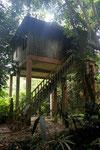 unsere Unterkunft (Taman Negara)