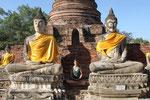 mehrere Meter hohe Buddhastatuen (Ayutthaya)
