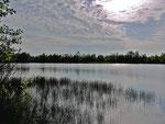 Heidesee in der Osterheide