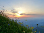 Sonnenuntergang vom Hochgrat