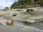 Gabriola Island, and my mug