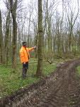Jens Dedow zeigt einen von der Forst markierten Höhlenbaum