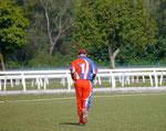 Dingo on the run in between overs
