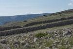 Krk: Hunderte von Kilometern Steinmauern