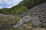 Blockhalde mit angrenzendem Flachmoor