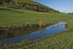 Temporärgewässer im Berner Jura