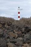 Euphorbien vor dem Leuchtturm von Porís de Abona