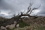 Auf einer Hochebene oberhalb Baskas