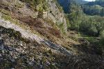Von Gebüsch und Bäumen befreite Schuttflur, Kanton Solothurn