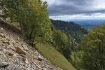 Natur pur im Solothurner Jura