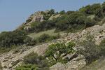 Mediterrane Landschaft an der Küste Thrakiens