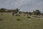 Karge Landschaft an der thrakischen Küste