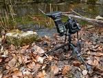 Installation mit Stativ, Nikon D300, Makro 105 mm, externem Blitzgerät und Fernauslöser zum Fotografieren laichender Grasfrösche