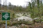Alter Steinbruch, aufgewertet für die Geburthelferkröte und andere Amphibienarten, Kanton Solothurn