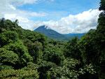 Regenwald vor dem Volcán Arenal