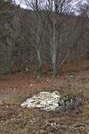 Neuer Steinhaufen auf einer Viehweide am Waldrand, Kanton Bern
