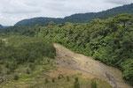 Regenwald, Parque Nacional Braulio Carrillo, Cordillera Central